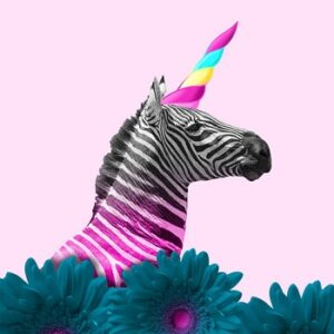 Zebra or unicorn. Think differently concept