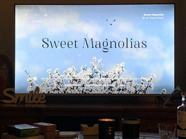 Sweet Magnolias series for women to binge